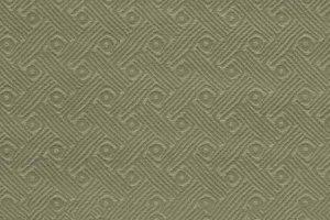 Vertikale-Olive